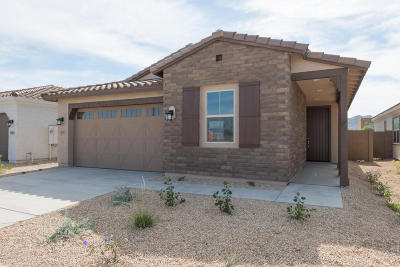 Phoenix Single Family Home For Sale: 2930 E Sunland Avenue