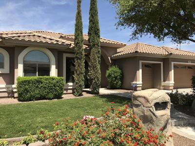 Peoria Single Family Home For Sale: 8040 W Camino De Oro