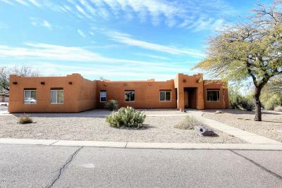 Cave Creek Single Family Home For Sale: 4845 E Palo Brea Lane