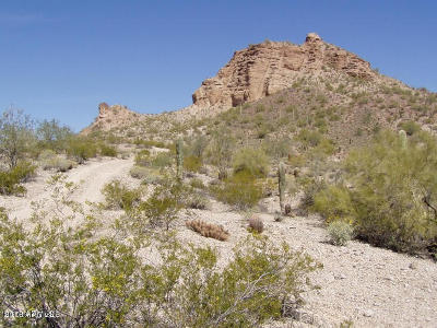 Queen Creek Residential Lots & Land For Sale: N Ellen Road