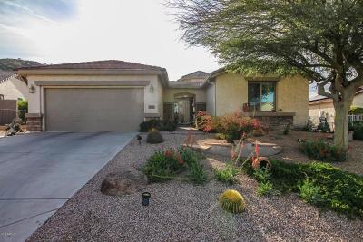 San Tan Valley Single Family Home For Sale: 32120 N Larkspur Drive