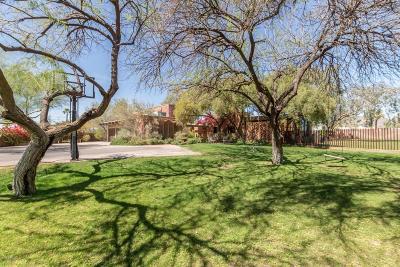 Phoenix Single Family Home For Sale: 4040 E Cudia Way