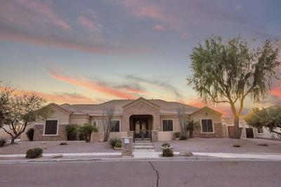 Queen Creek Single Family Home For Sale: 19701 E Julius Road