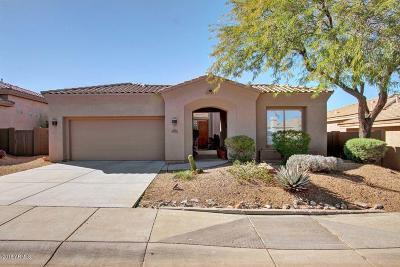 Scottsdale Single Family Home For Sale: 10727 E Caribbean Lane