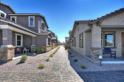 Mesa Single Family Home For Sale: 308 N Sandal