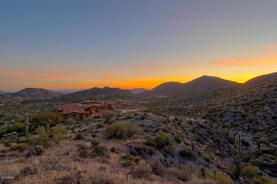 Single Family Home For Sale: 42882 N Chiricahua Pass