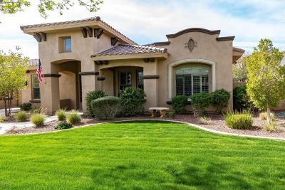 Buckeye Single Family Home For Sale: 20765 W Main Street