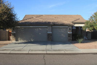 Queen Creek Single Family Home For Sale: 2228 W Sunshine Butte Drive