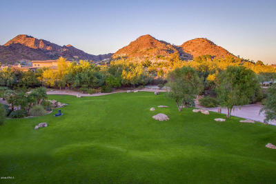 Paradise Valley Single Family Home For Sale: 6219 N Paradise View Drive