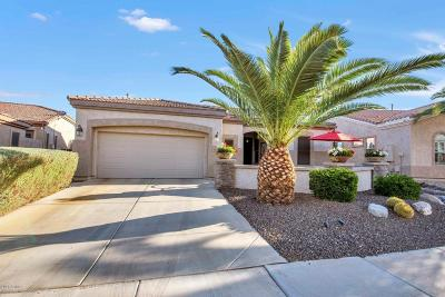 Gilbert Single Family Home For Sale: 4666 E Donato Drive