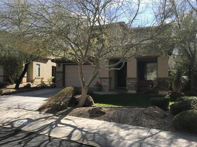 Peoria Single Family Home For Sale: 6817 W Evergreen Terrace
