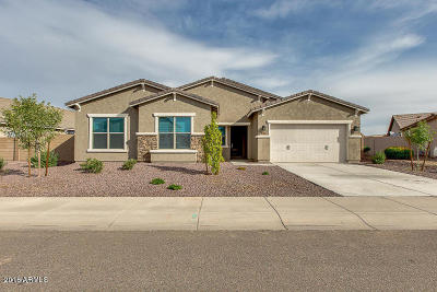 Tolleson Single Family Home For Sale: 10508 W Odeum Lane