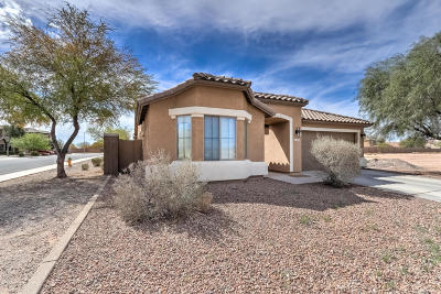 Casa Grande Single Family Home For Sale: 1677 E Prickly Pear Place