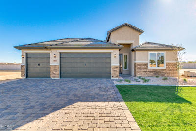 Queen Creek Single Family Home For Sale: 2170 W Olivia Drive