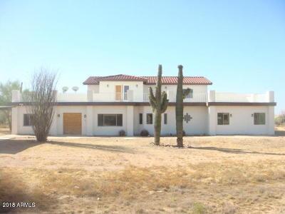 Scottsdale Single Family Home For Sale: 6950 E Dixileta Drive