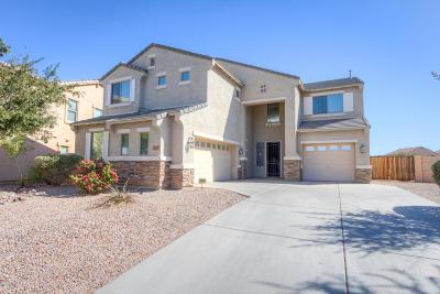 Maricopa Single Family Home For Sale: 20785 N Danielle Avenue