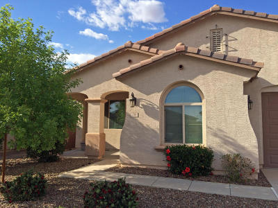 Queen Creek Single Family Home For Sale: 138 W Yellow Wood Avenue