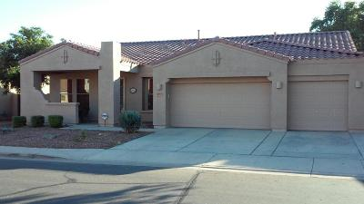 Chandler Single Family Home For Sale: 421 W Locust Drive