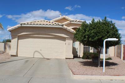 Chandler Single Family Home For Sale: 1010 S Yucca Place