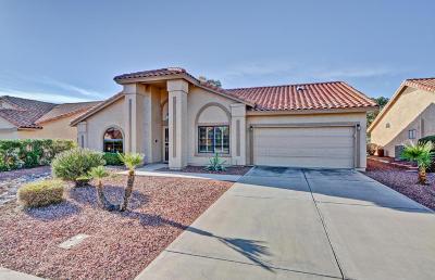 Peoria Single Family Home For Sale: 9435 W Tonto Lane
