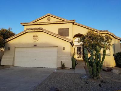 Phoenix AZ Single Family Home For Sale: $379,000