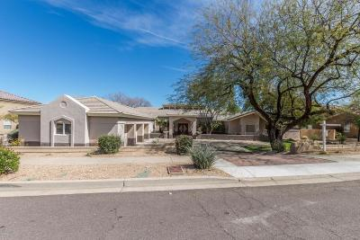 Phoenix Single Family Home For Sale: 9041 N 46th Street