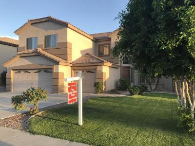 Mesa Single Family Home For Sale: 10045 E Lomita Avenue