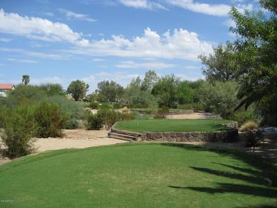 Phoenix Single Family Home For Sale: 5030 E Vaughn Drive