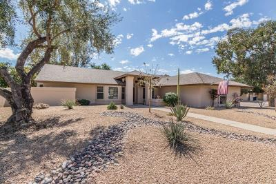 Tempe Single Family Home For Sale: 1929 E Redmon Drive