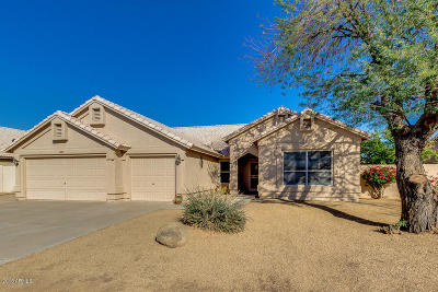 Goodyear Single Family Home For Sale: 2591 N 133rd Avenue