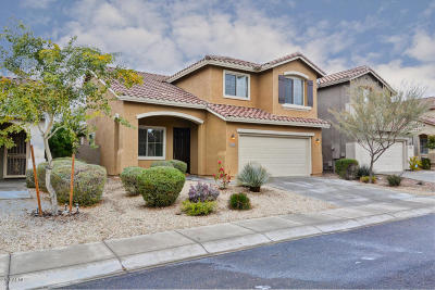 Anthem Single Family Home For Sale: 43256 N Heavenly Way