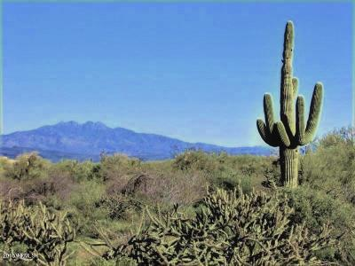 Scottsdale Residential Lots & Land For Sale: 14600 E Red Bird Road