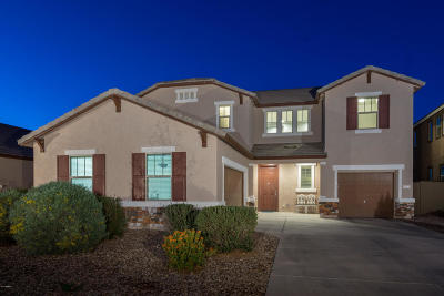 San Tan Valley Single Family Home For Sale: 868 W Desert Glen Drive