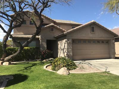 Litchfield Park Rental For Rent: 6030 N Castano Drive