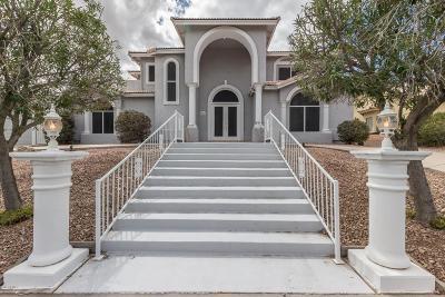 Single Family Home For Sale: 15215 E Sage Drive