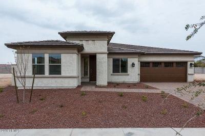 Buckeye Single Family Home For Sale: 20527 W Delaney Drive