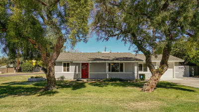 Phoenix Single Family Home For Sale: 1002 E Colter Street