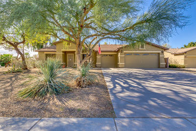 Gilbert Single Family Home For Sale: 2541 E Milky Way