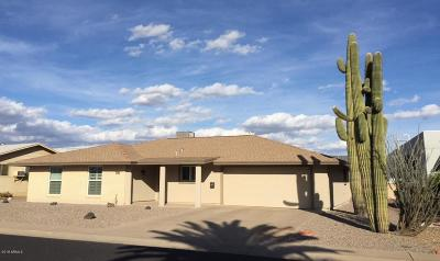 Sun City Rental For Rent: 10807 W Camelot Circle