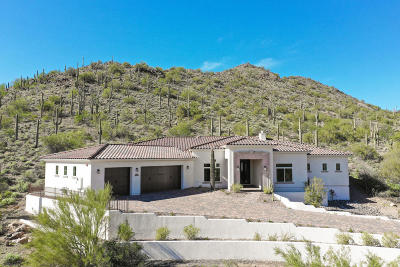 Cave Creek Single Family Home For Sale: 36480 N Conestoga Trail