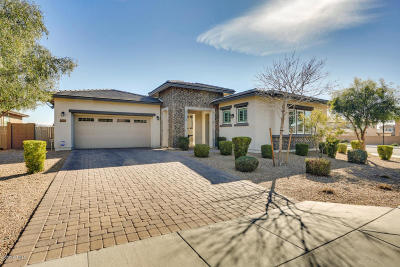 Litchfield Park Single Family Home For Sale: 14589 W Medlock Drive