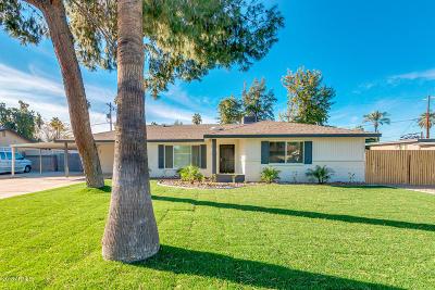 Phoenix Single Family Home For Sale: 531 W Stella Lane