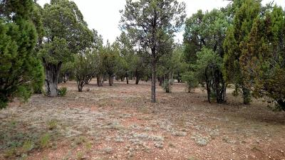 Overgaard AZ Residential Lots & Land For Sale: $69,900