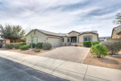 Maricopa Single Family Home For Sale: 43415 W Palmen Drive