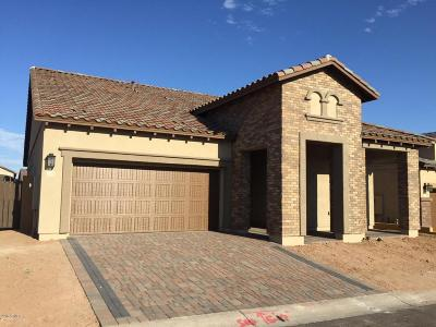 Mesa AZ Single Family Home For Sale: $411,563
