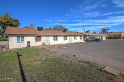 Phoenix Multi Family Home For Sale: 1001 32nd Avenue