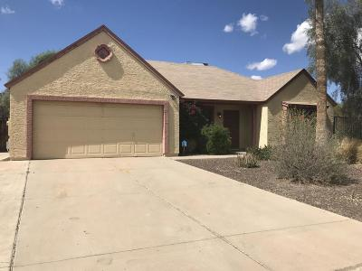 Phoenix Single Family Home For Sale: 19448 N 12th Street