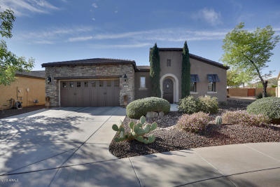 Peoria Single Family Home For Sale: 13067 W Redbird Road