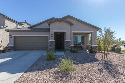 Mesa Single Family Home For Sale: 5355 S Grenoble