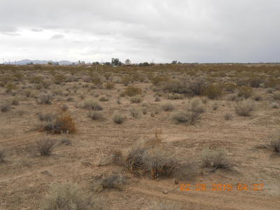 Tonopah AZ Residential Lots & Land For Sale: $28,800